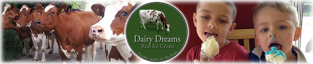 Real Ice Cream - Freshly Made on the Farm